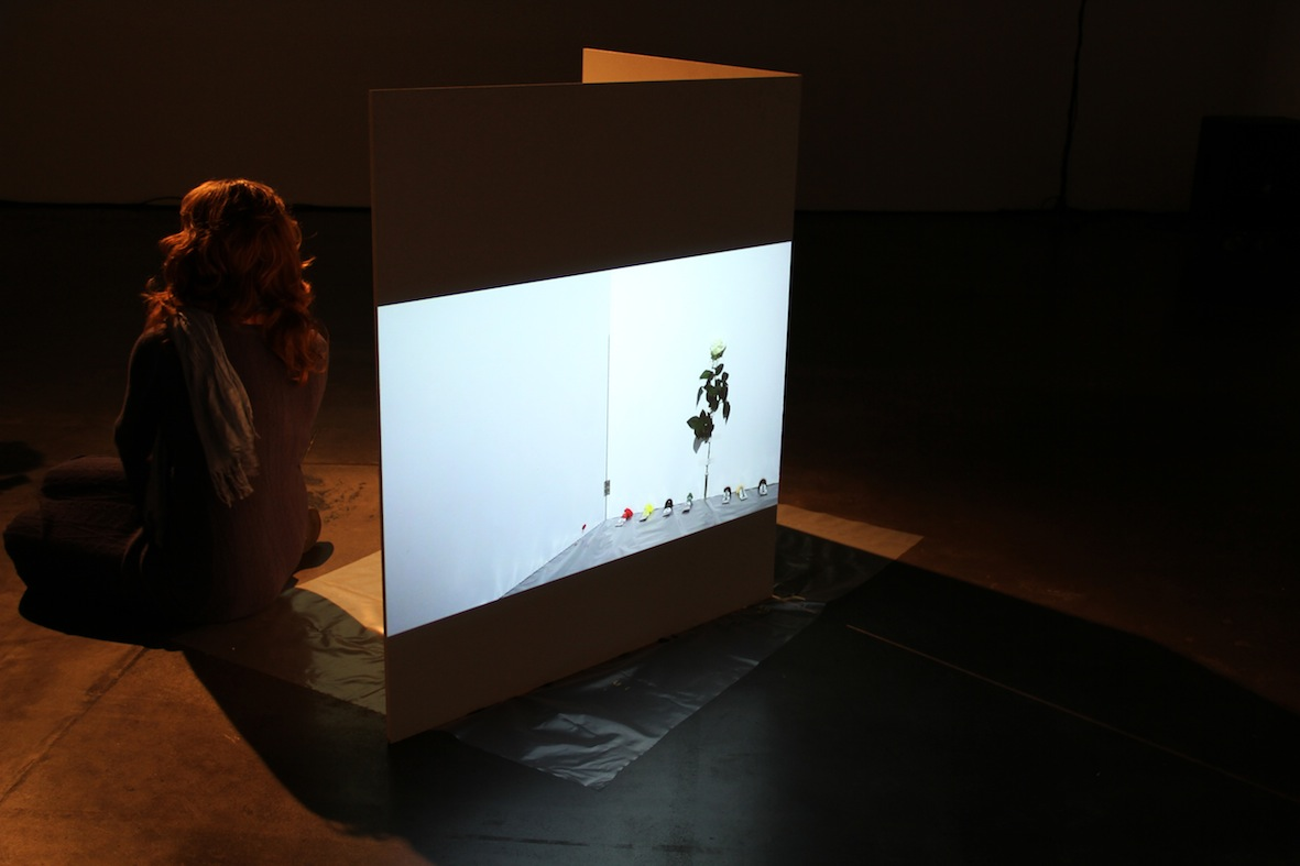 Installation with video projection