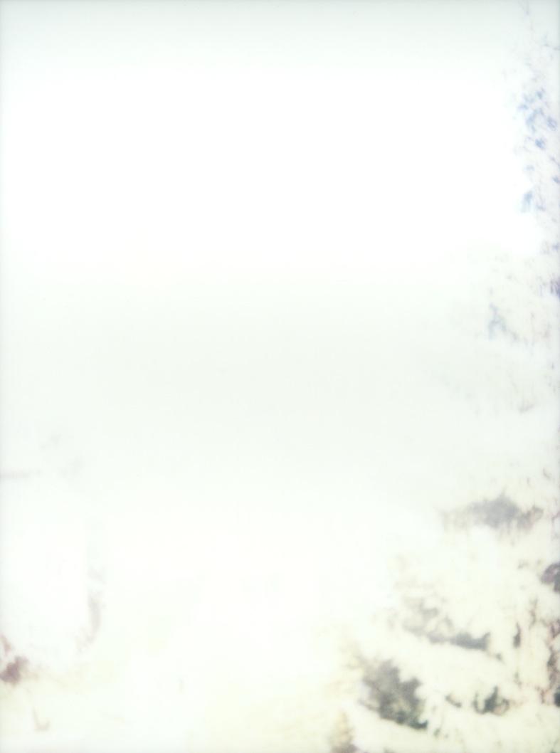 polaroid_4
